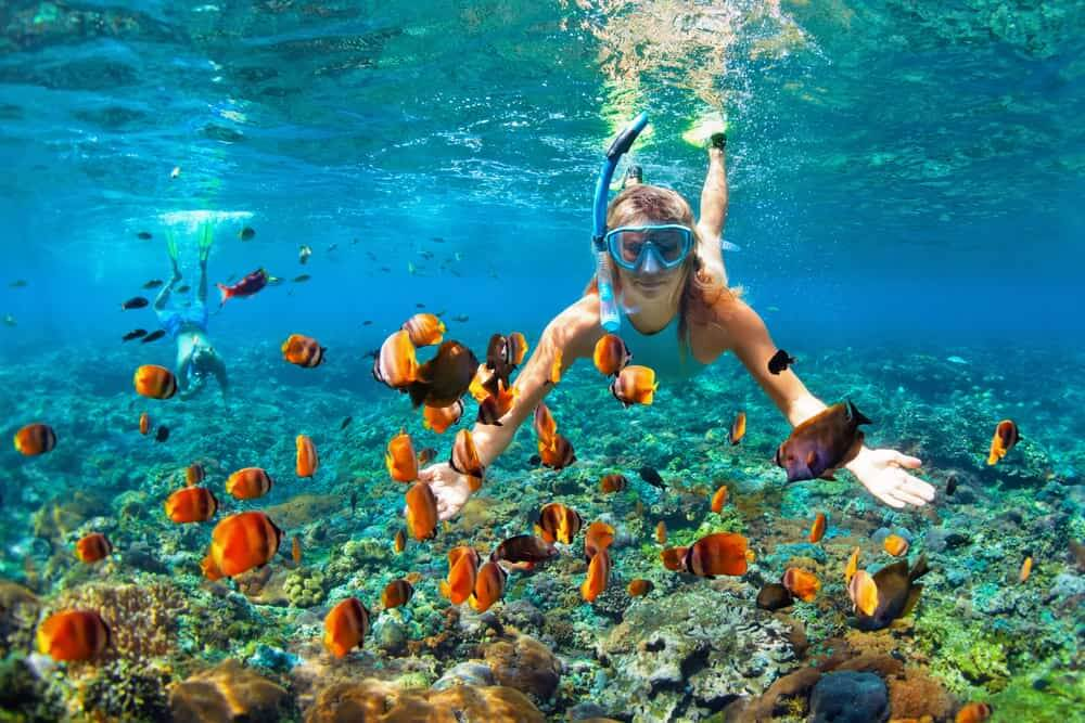 海で楽しめるアクティビティ