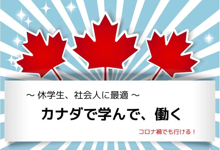 カナダで働くCoop